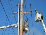 Electricidad operario