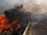 A fire in a deforested section of the Amazon basin on November 23, 2014, in Ze Doca, Brazil.