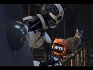 Love, Death, and Robots