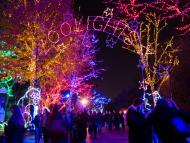 The Chicago ZooLights light display marks its 25th anniversary this year.