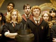 """""""Harry Potter"""" fans are in for a major treat."""