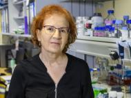 Margarita del Val, viróloga del CSIC.