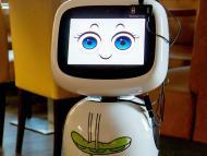 Dadawan robots.