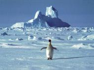 Methane is mysteriously leaking from the sea floor in Antarctica, edging global heating to a point of no return