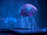 Cerebro conectado a un ordenador.