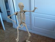 Esqueleto de Halloween en Google