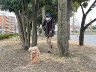 Shoji Morimoto japones al que se alquila por no hacer nada