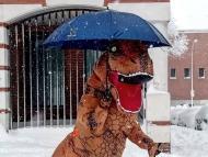 T-Rex se protege de la nieve que cae en Madrid.