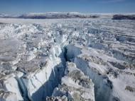 Encuentran plantas fosilizadas a 450 metros bajo la capa de hielo de Groenlandia, gracias a un proyecto secreto de la Guerra Fría