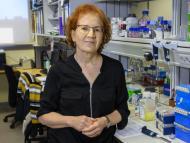 Qué vacuna contra el coronavirus se pondría Margarita del Val si pudiese elegir, y por qué