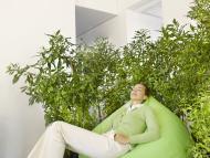 Una mujer duerme rodeada de plantas