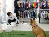 ¿Qué tiendas admiten perros en su interior mientras los dueños compran?