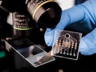 Análisis de sangre para detectar el cáncer