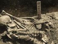 Un esqueleto de 3.000 años con casi 800 lesiones resulta ser la víctima de ataque de tiburón más antigua jamás encontrada