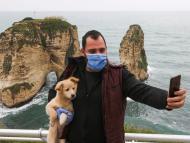 coronavirus en mascotas