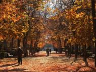 Paisaje de otoño en Madrid