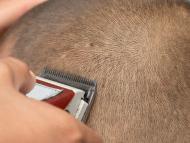 Afeitando cabeza