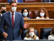 El presidente del Gobierno, Pedro Sánchez, durante una sesión de control en el Congreso de los Diputados