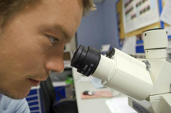 Científico en el microscopio