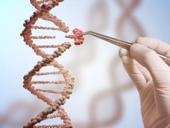 curar con tecnicas de CRISPR