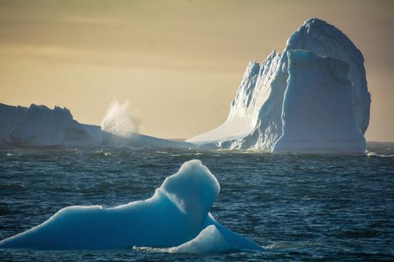 récord de temperatura febrero antártida