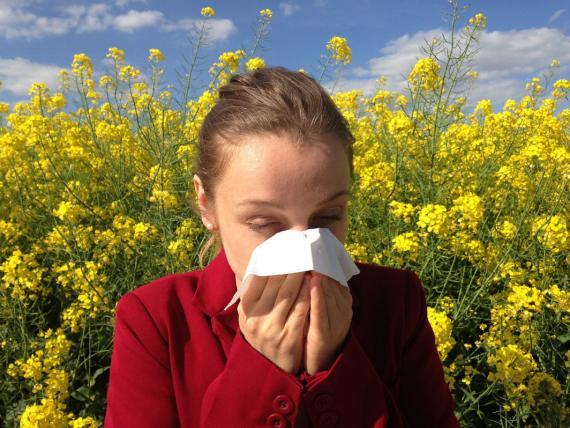 Combatir alergia primaveral