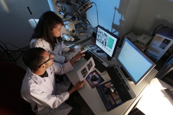 investigadores, laboratorio
