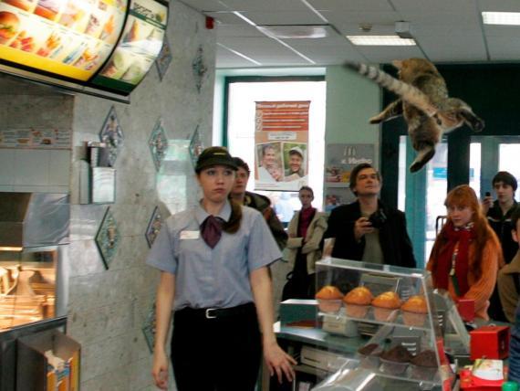 Aquí puedes ver algunas de las terroríficas historias de los empleados de McDonald's