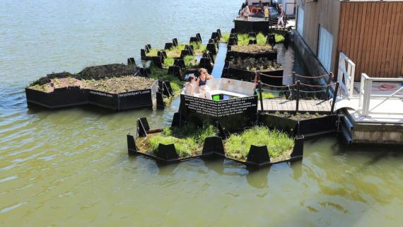 The floating park prototype in Rotterdam.