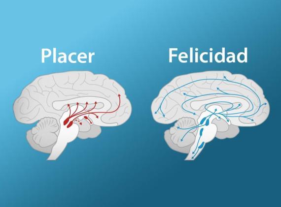 Placer vs Felicidad