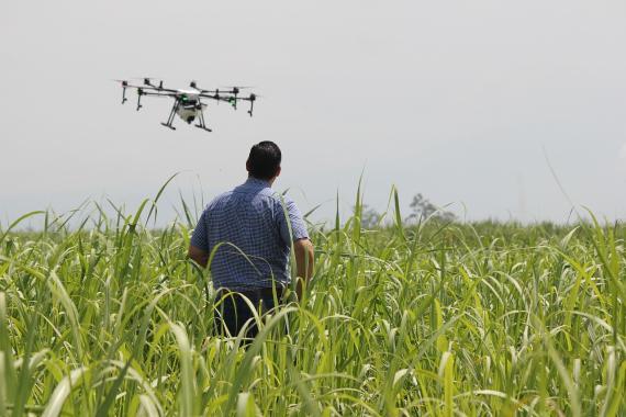 La tecnología puede utilizarse para ayudar a los agricultores a producir mejores cosechas.