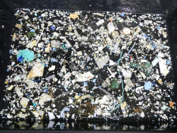 Some of the plastic the Ocean Cleanup team found while surveying the Great Pacific Garbage Patch.