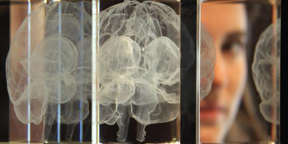 cerebro concepto inteligencia artificial.
