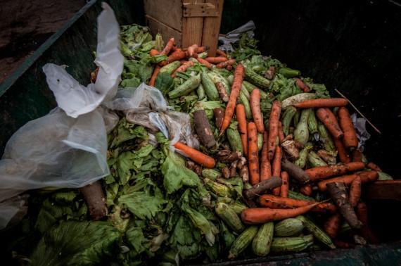 desperdicios alimentos