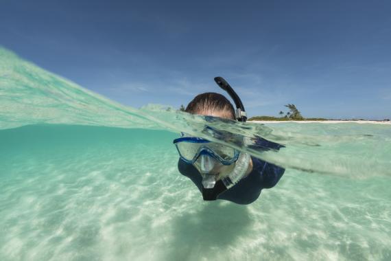 Snorkel Galapagos