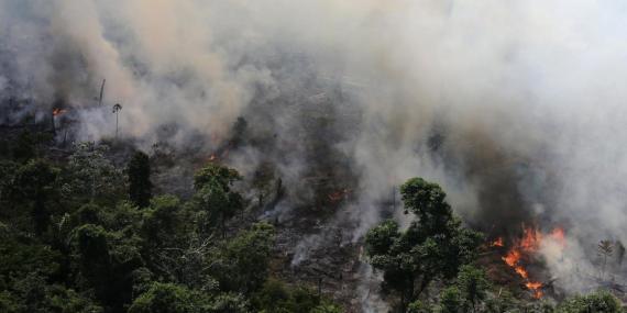 Parte de la selva amazónica ardiendo cerca de la ciudad de Novo Progresso, en Brasil.