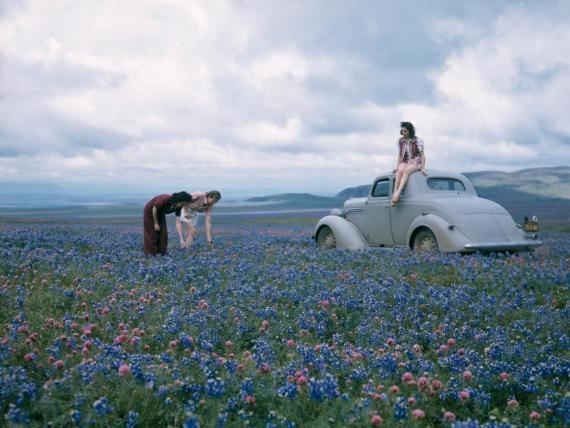 Women stop to admire the beautiful flowers during a long drive.