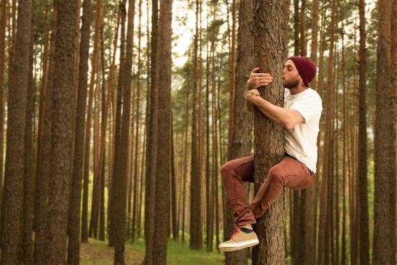 Abrazos y árboles