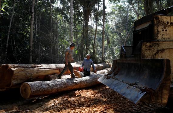Deforestación en Bom Retiro, el Amazonas de Brasil