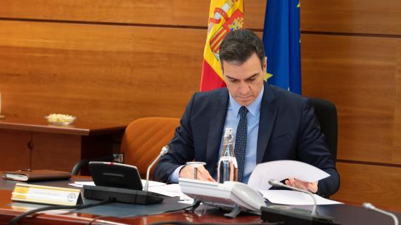 Pedro Sánchez, en el Consejo de Ministros telemático del 31 de marzo.
