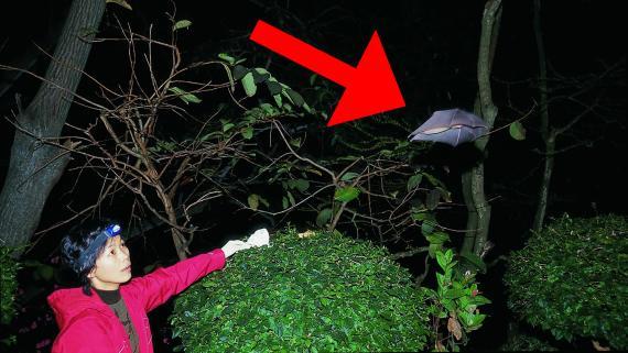 La viróloga Shi Zhing Li, conocida como 'la Bat Woman china'.