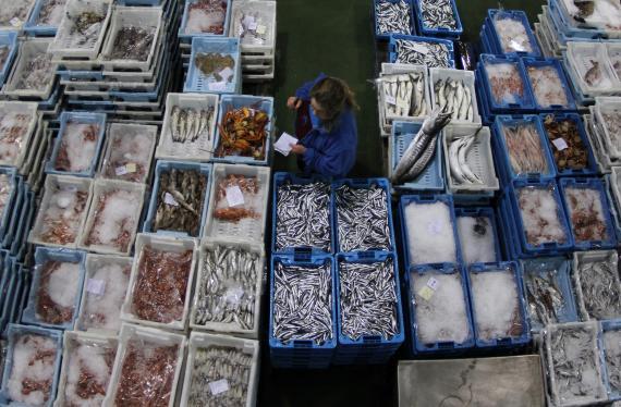Un mayorista de pescado verifica las capturas antes de entrar en el área de subasta