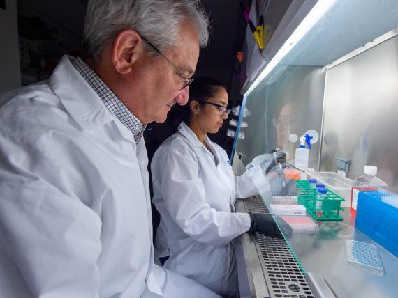 Investigadores del laboratorio Weiner trabajan en la vacuna para el coronavirus.