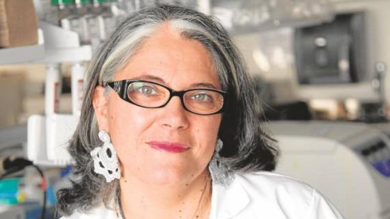 Ana Fernández-Sesma, viróloga en Mount Sinai