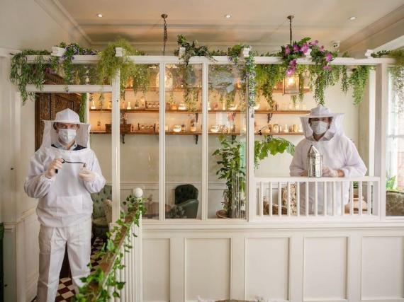 Los camareros, llamados botánicos de la casa, usarán EPPs en forma de trajes de apicultor.