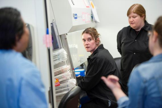 Kylene Karnuth, científica del laboratorio clínico en el Centro de Investigación de Microbiología de Minnesota y colegas durante el ensayo de prueba de la hidroxicloroquina contra el coronavirus.