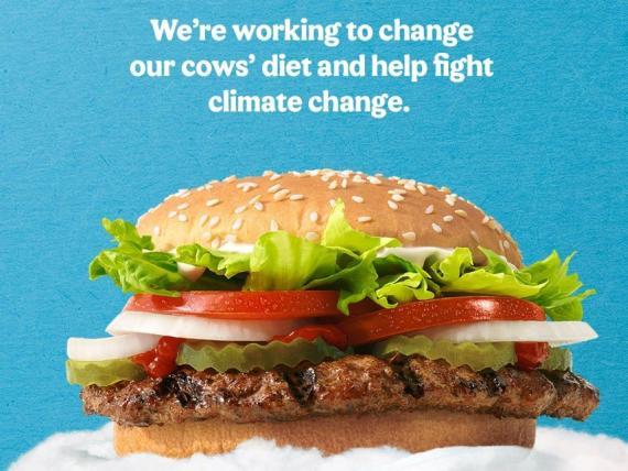 Burger King estrena un nuevo Whopper hecho de vacas que eructan y se tiran pedos un 33% menos