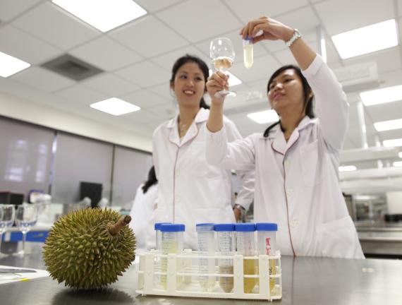 El futuro de las baterías eléctricas está en el durián