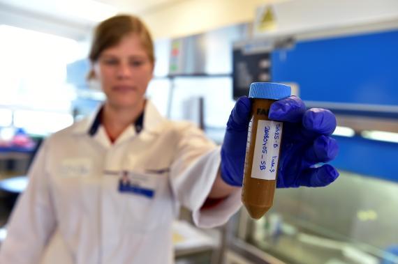 Una científica investiga con heces donadas