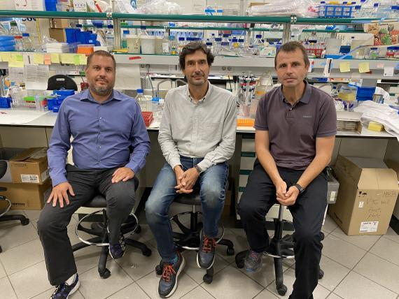 Tim Cash, Manuel Carrasco y Marc Ramis, de Senolytic Therapeutics.